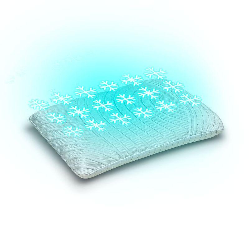 image-site-pillow-ice-1000x1000-02set